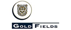 13_goldfields